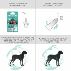 PREVENTIS Anti-Flea, Tick and Mosquito Repellent Pipette Large Dog X4  - 3