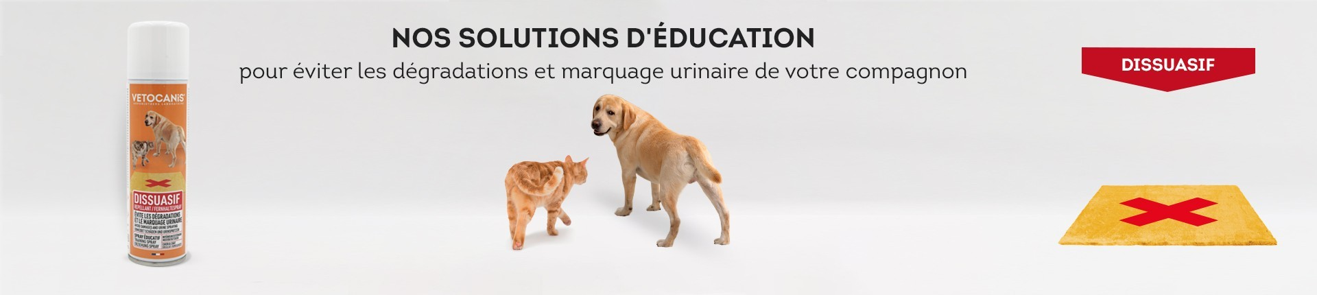 Solution Dissuasive pour Chaton et Chat