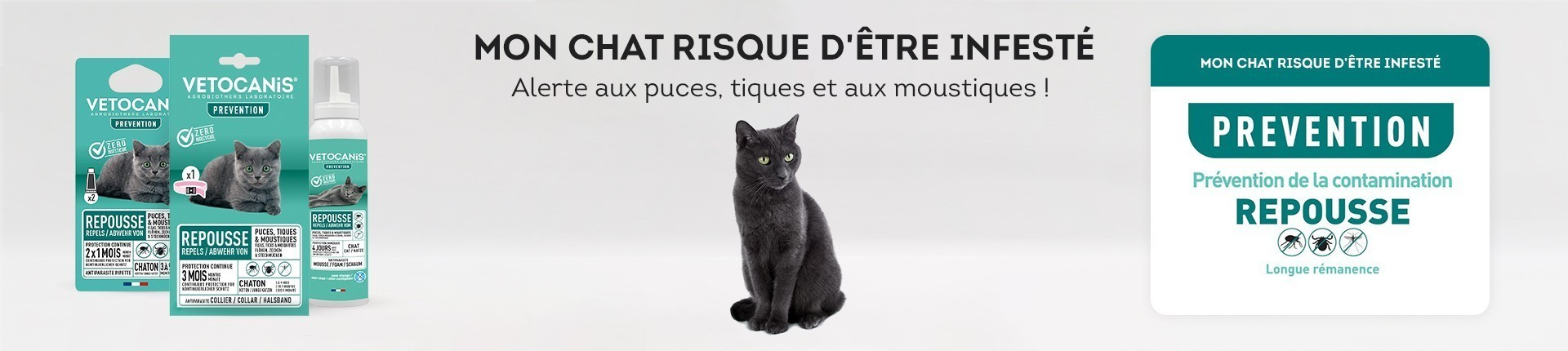 Anti puces PREVENTION (Biocides) pour Chat