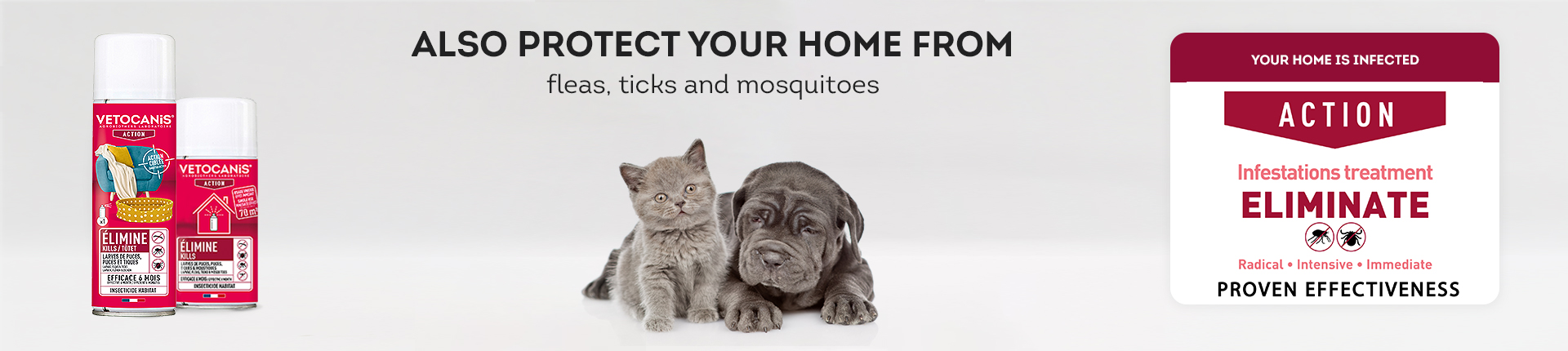 HOME - Flea & Tick Control