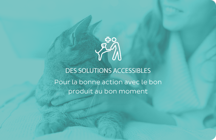 Des solutions accessibles